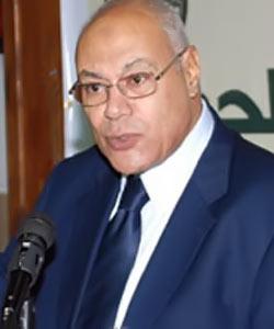 العوا: أياد خفية تعبث بأمن مصر