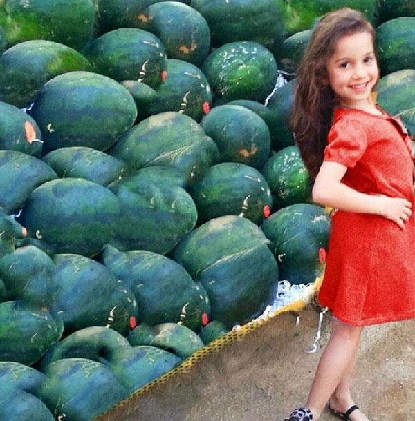 بالصور طفلة تتقمص نانسي عجرم ملكة البطيخ 2014-05-05_00114.jpg