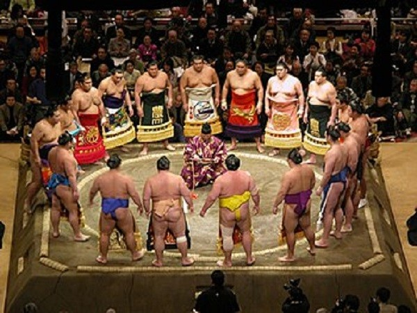 رياضة السومو اليابانية